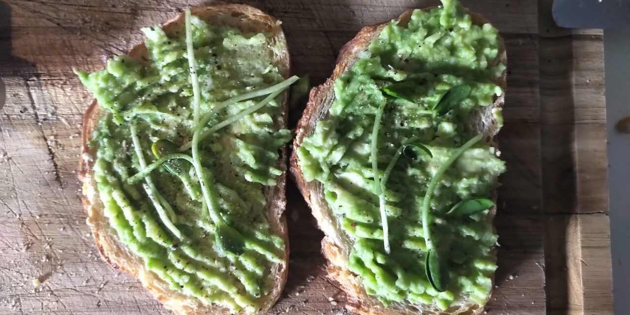 Microgreens on Avocado toast
