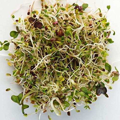 Spring Salad Mix
